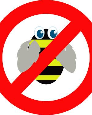 adult-bee